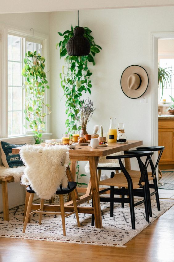 plants in dinning room